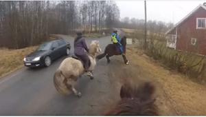 Rozpędzony samochód mija konie... To nagranie rozwścieczyło wszystkich Internaut