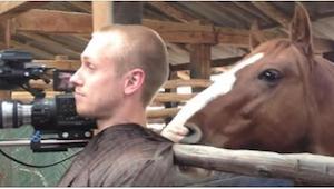 Koń upatrzył sobie ofiarę, a potem ją zaatakował w najzabawniejszy sposób, jaki