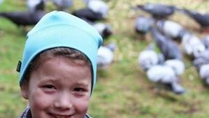 Dziewczynka codziennie dokarmiała ptaki, w końcu zaczęły jej się odwdzięczać!