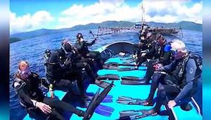 Rekiny zaplątały się w sieć rybacką. 8 odważnych nurków zdecydowało się im pomóc