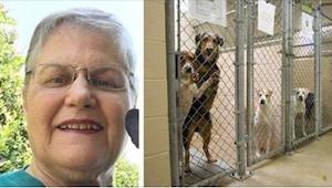 Starsza pani zapytała w schronisku o psa, którego nikt nie chciał. Zobaczcie, z