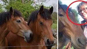 Nie chciała, by kolejne konie, które są już stare i słabe, źle skończyły, więc w