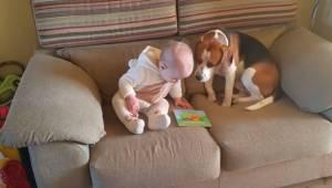 Rodzice postanowili nagrać jak ich córka bawi się z psem. To wideo obejrzało 13