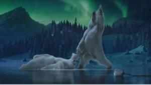 Świąteczna reklama z niedźwiedziami tańczącymi na lodzie została uznana za hit 2
