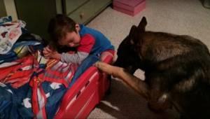 Znajomi nie wierzyli im, gdy mówili, co robi ich pies, więc nagrali wideo jako d