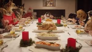 Gdy zobaczyłem 13 psów i 1 kota przy tym stole nie mogę się przestać śmiać