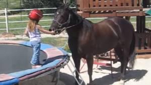 Trzyletnia dziewczynka chce pojeździć na koniu, to co nagrała jej mama jest nies
