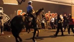 To, co zrobił ten koń, jest świetne! Oby więcej takich nagrań.