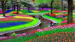 Zobaczcie 15 zdjęć będących marzeniem każdego ogrodnika...