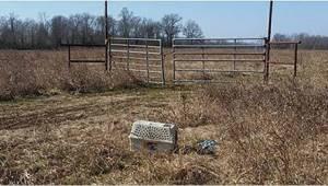 2 motocyklistów znalazło klatkę porzuconą na pustkowiu. Pies, który został zamkn