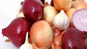 Rodzaje cebuli i jej zastosowanie w kuchni