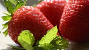 Teraz możesz cieszyć się świeżymi truskawkami dużo dłużej, dzięki tej prostej sz