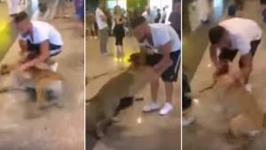 Pies widzi swojego właściciela pierwszy raz od 3 lat. Wtedy zaczyna dosłownie wa