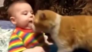 Dziecko nie chce się położyć spać, więc kot postanawia mu pomóc w najlepszy możl