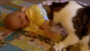 Kot opiekuje się dzieckiem w najsłodszym nagraniu jakie zobaczysz w internecie.