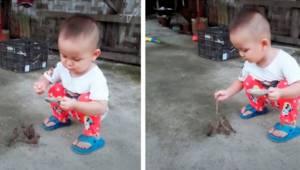 Mały chłopczyk karmi cztery małe ptaszki, film robi sensację ze względu na to ja
