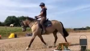 Koń jest zaskoczony własnym pierdnięciem. A to nagranie podbija cały internet.