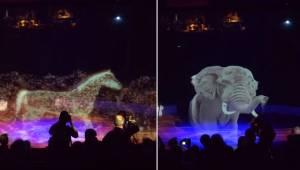 Cyrk postanowił nie męczyć prawdziwych zwierząt i zamiast tego pokazać hologramy