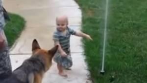 Mały chłopiec tłumaczy psu jak działa spryskiwacz. Reakcja owczarka niemieckiego