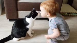 Urocze nagranie: ten chłopiec naprawdę kocha swojego kota! I chyba z wzajemności