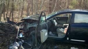 Kobieta skasowała samochód w wypadku po tym jak wpadła w panikę widząc PAJĄKA w