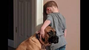 Przyjaciele na dobre i na złe. Lojalny pies dotrzymuje towarzystwa chłopcu, któr