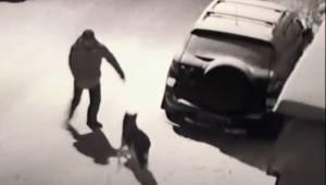 Ten mężczyzna za chwilę kopnie niewinnego psa. Natychmiast otrzymuje zasłużoną k